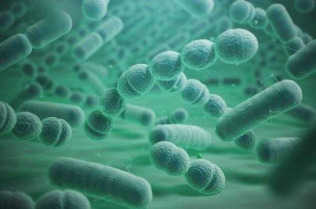 Et Yiyen Bakteri (Nekrotizan Fasiit) Nedir? Sebepleri ve Tedavi Yöntemleri