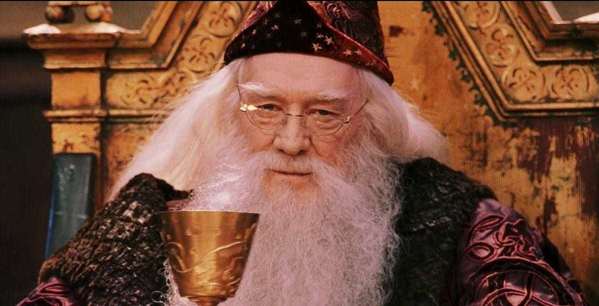 Harry Potter Evrenine Dair En Büyülü 10 Gerçek