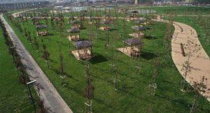 İstanbul'daki Millet Bahçeleri Nerede?