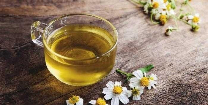 Papatya Çayı Nasıl Demlenir? Papatyanın Mucizevi Faydaları