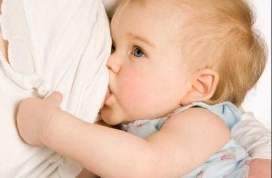 Bebekler Ne Zaman Su İçebilir?