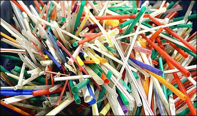 Plastiğin Zararları Nelerdir? Plastik ve Doğaya Yaptığı Tahribatı Gözler Önüne Seren 21 Gerçek