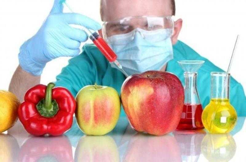 GDO Nedir? GDO'lu Gıdalardan Nasıl Kaçınılır?