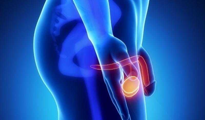Prostat Kanseri Nedir, Belirtileri ve Tedavi Yolları Nelerdir?