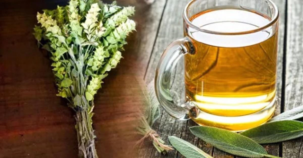 Kadın sağlığını koruyan çay: Adaçayı